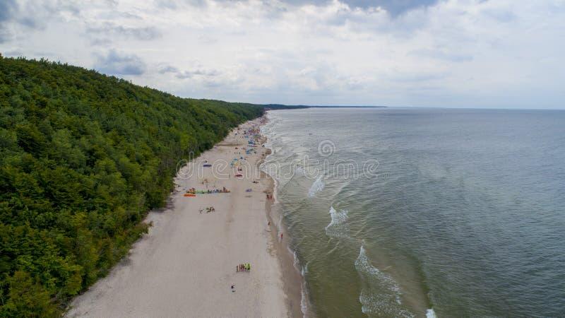 Rust op het Baltische volgende bos, zandige strand, lucht royalty-vrije stock afbeeldingen