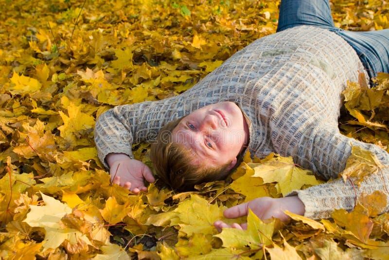 Rust op het de herfstblad stock afbeelding