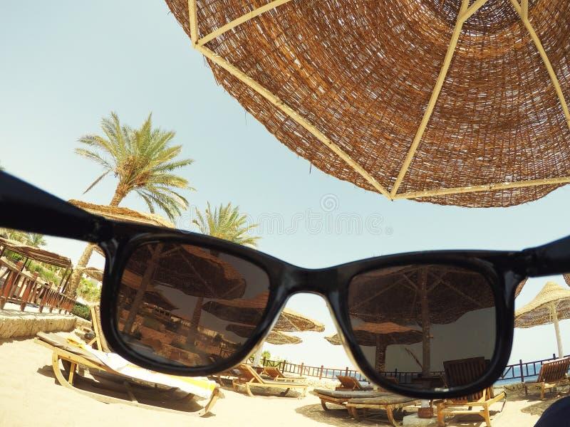 Rust op het overzees, palmen, zonneschijn, blauwe hemel stock afbeeldingen