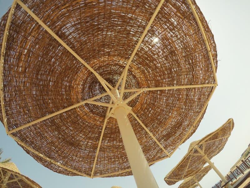 Rust op het strand, zonneschijn, palmen, blauwe hemel stock fotografie