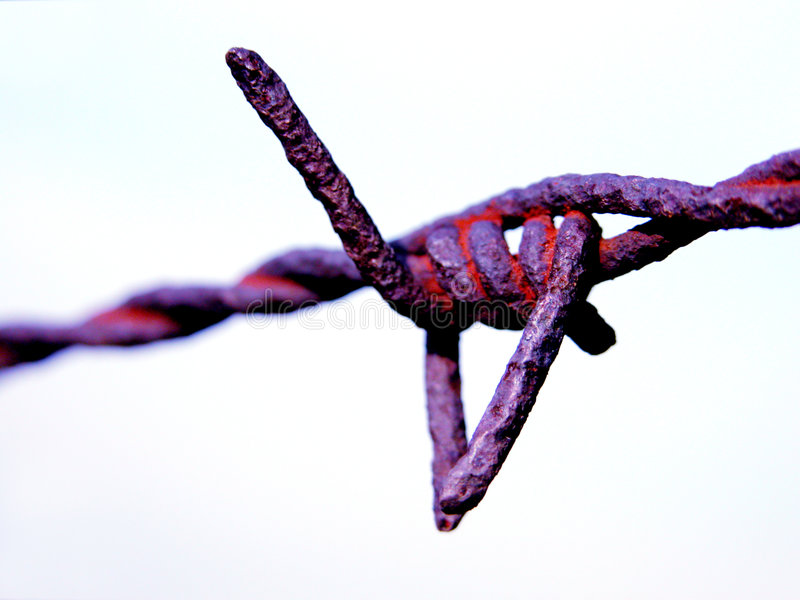 Download Rusted Barbwire Royalty Free Stock Photos - Image: 58608