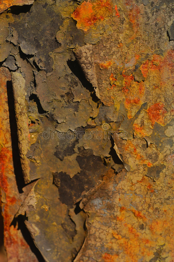 Free Rusted Bolt Stock Image - 3842191