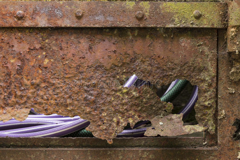 Rusted door with purple and green hose. Closeup of a rusty, broken garden door with view on a purple and a green water hose through the gaps royalty free stock photos
