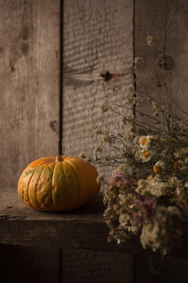 A rustic autumn still life with pumpkin, dry heral flowers on a wooden surface. Thanksgiving, coutryside And Fall Background. A rustic autumn still life with stock photo