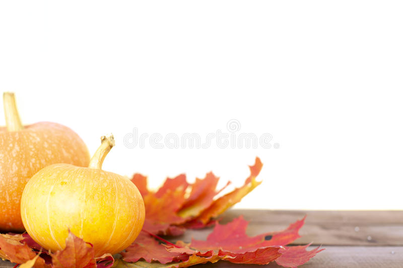 Rustic autumn still life with pumpkins and golden leaves on a wooden surface. stock photography