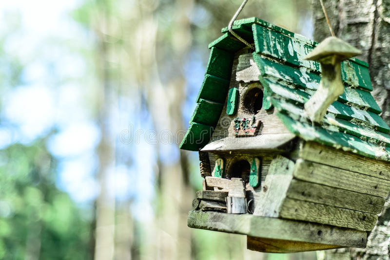 Rustic Birdhouse. A rustic birdhouse near a forest royalty free stock images