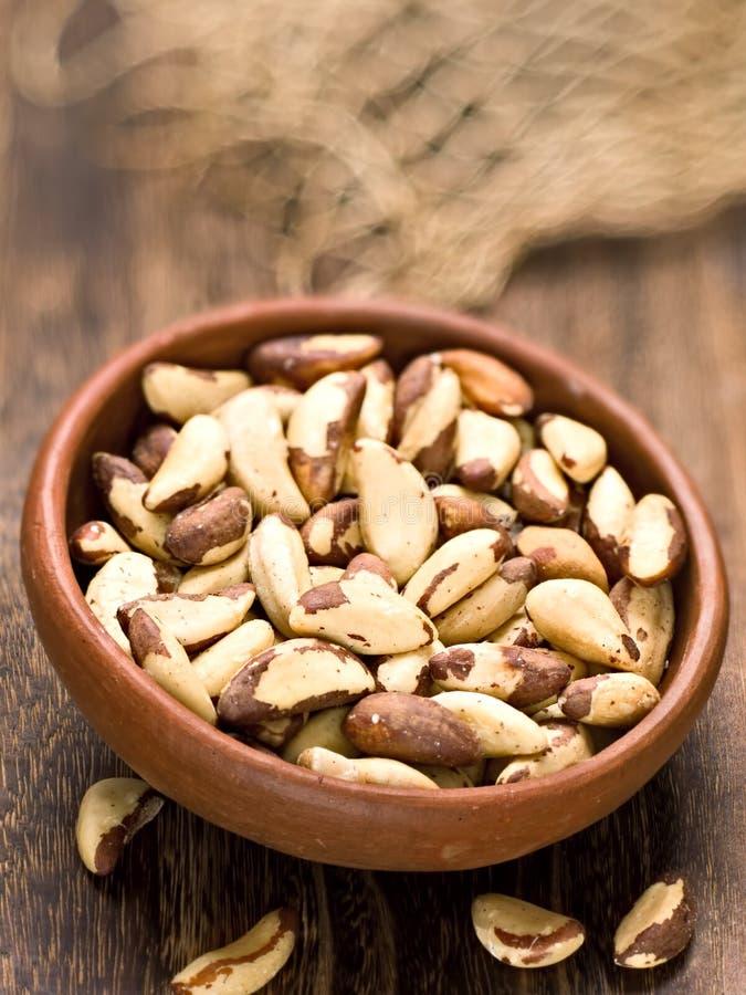 Rustic brazil nut stock image