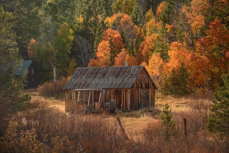 Rustic Cabin Near Red Creek royalty free stock photo