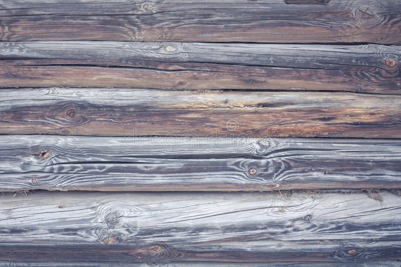Rustic cabin wood wall background in vintage countryside style with blue tint. And cracks royalty free stock photo