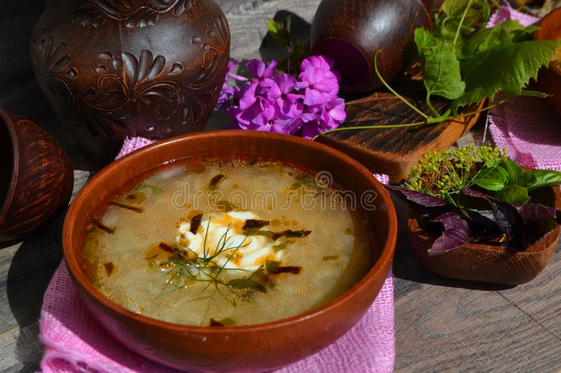 Rustic ceramic bowl of healthy cabbage soup, traditional russian cuisine. Rustic bowl of healthy cabbage soup, traditional russian cuisine royalty free stock photo