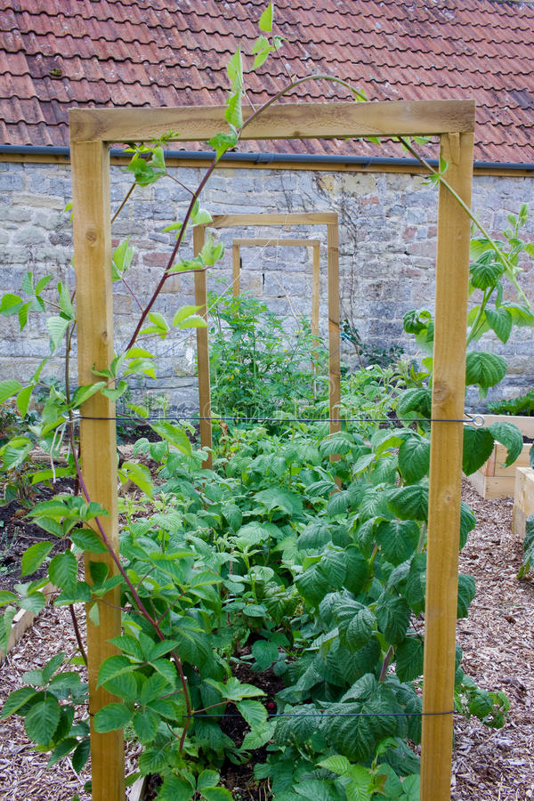 Rustic Country Vegetable & Flower Garden With Frame For Climbing ...