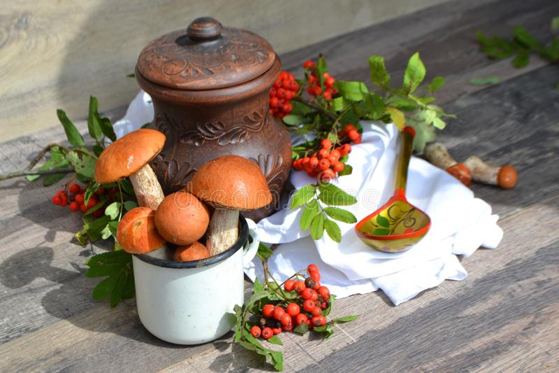 Rustic cuisine: ceramic jug, red-capped scaber stalk, orange-cap boletus and rowan. Rustic cuisine: ceramic jug, red-capped scaber stalk, orange cap boletus and royalty free stock photo