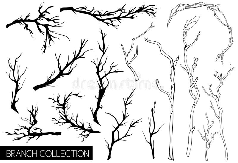 Rustic decorative plants and flowers collection. Hand drawn vintage vector design elements. royalty free illustration