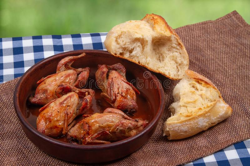 Rustic dinner outdoor. Roasted quail meat and white bread royalty free stock photos