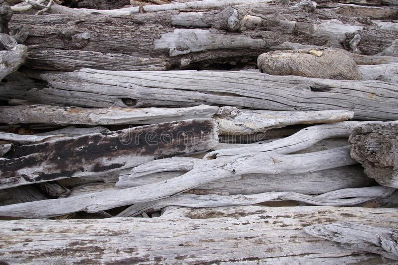 Rustic driftwood pieces background with texture and copy space stock image