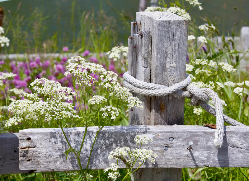 Download Rustic Fence stock photo. Image of wooden, rustic, nature - 23875594