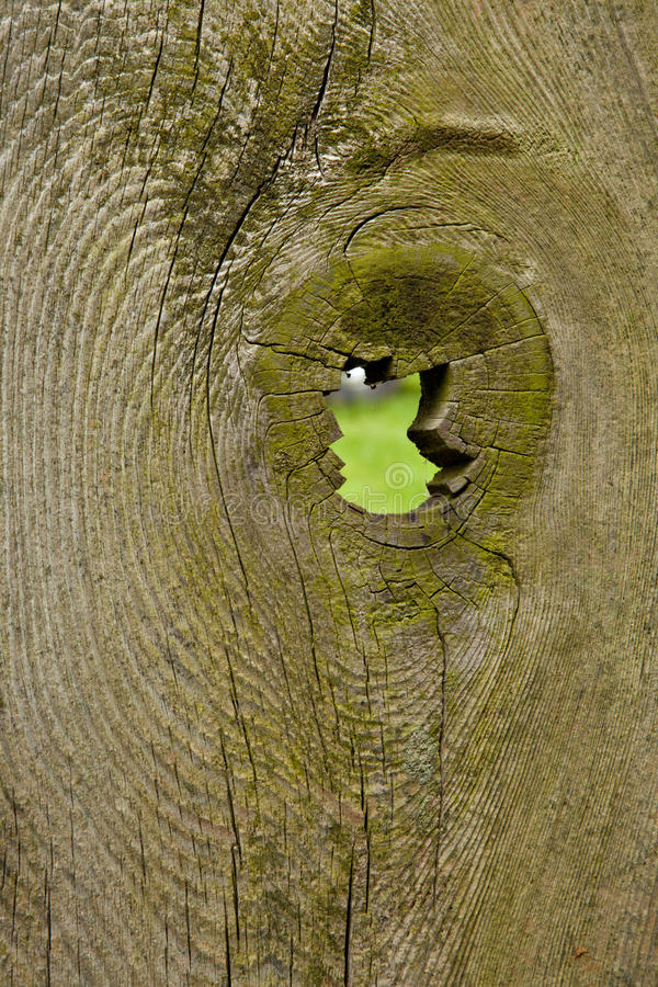 Free Rustic Fence With Knothole Royalty Free Stock Photos - 9491118