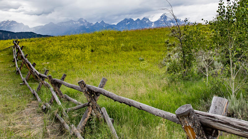 Rustic Fence in Wyoming royalty free stock images