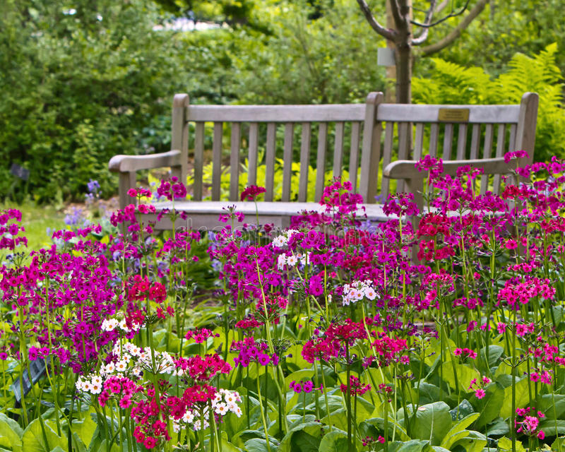 Download Rustic garden bench stock photo. Image of cheer, cheery - 27014510