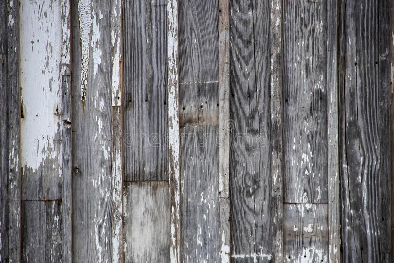 Rustic grey worn board and batten vertical siding background with white paint remnants royalty free stock photography