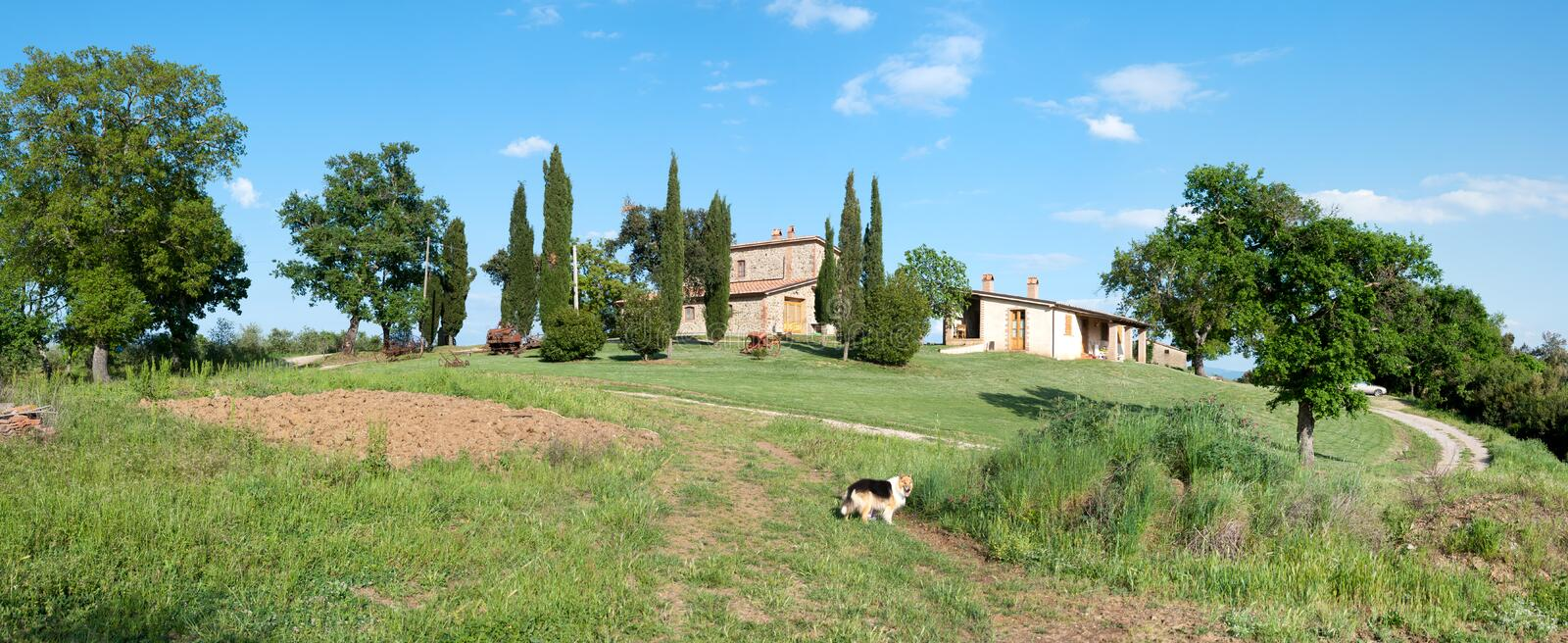 Rustic in Grosseto. Overview of a hill with cottages in Grosseto stock photo