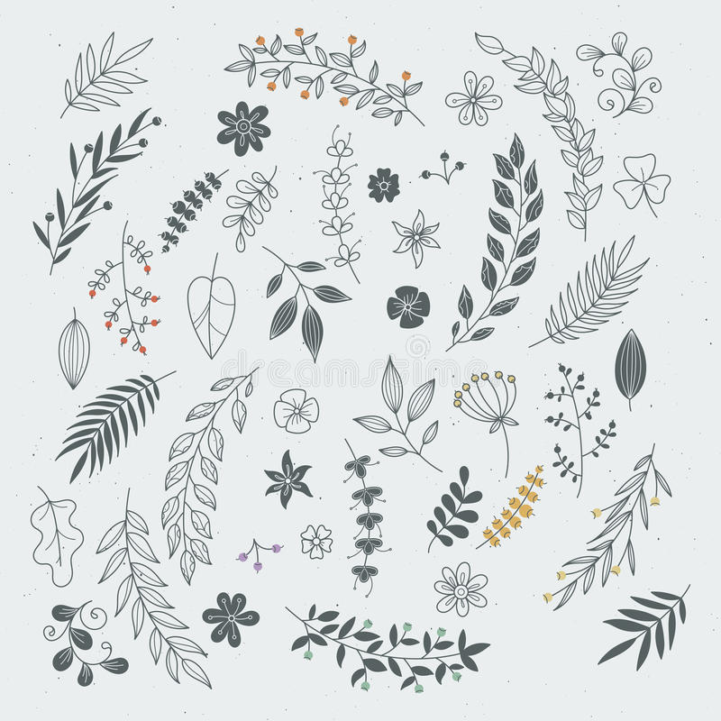 Rustic hand drawn ornaments with branches and leaves. Vector floral frames and borders. Branch floral vintage, illustration of sketch flower and leaf stock illustration