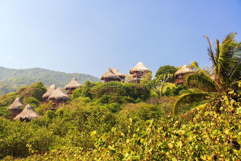 Rustic Huts in the Jungle stock photo