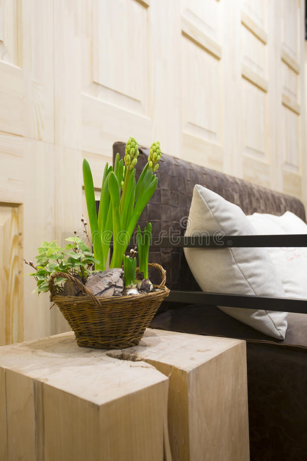 Rustic interior with hyacinth plant n the wicker basket stock images