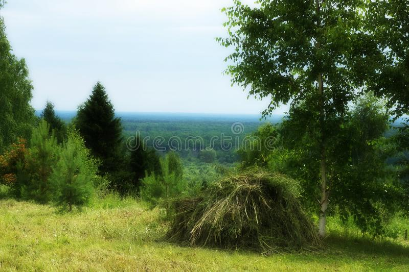 Rustic landscape with haystack summer day. Farming, agriculture. Rural scenery stock images