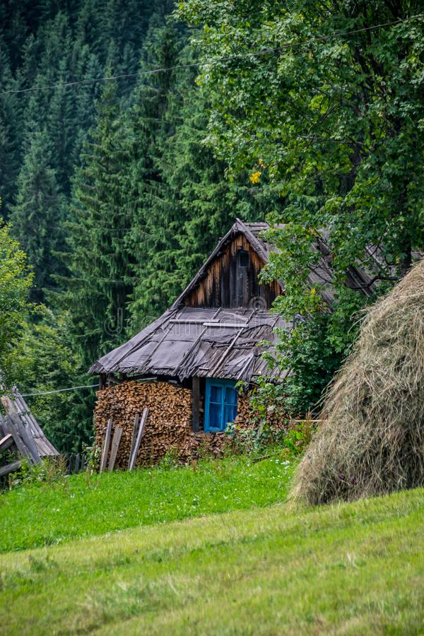 Rustic log cabin by the green forest stock image