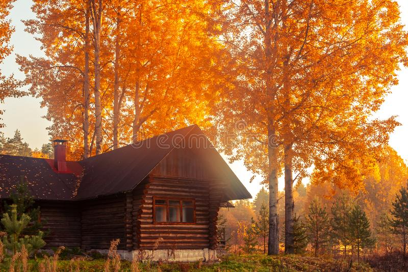 Rustic log house surrounded by autumn trees at sunrise on a foggy morning. Beautiful rural landscape.  stock photos