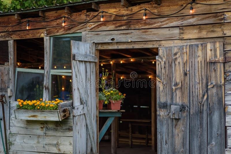 rustic old potting shed with edison lights royalty free stock photo