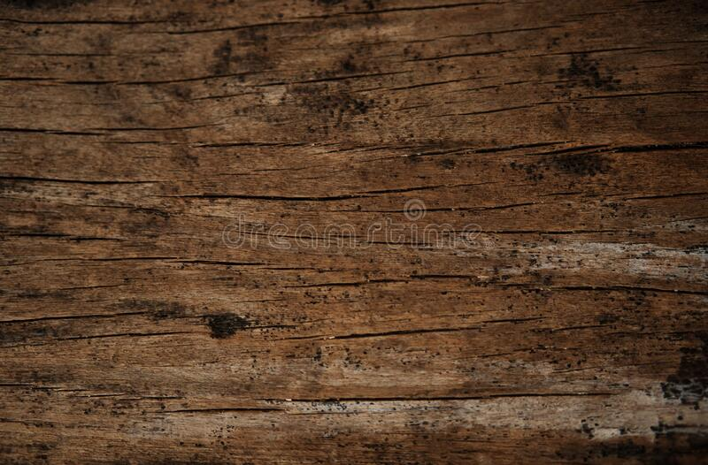 Rustic old wooden plank for background and design concepts. Rustic old wooden plank or board. This texture is often found on the walls of traditional wooden stock images