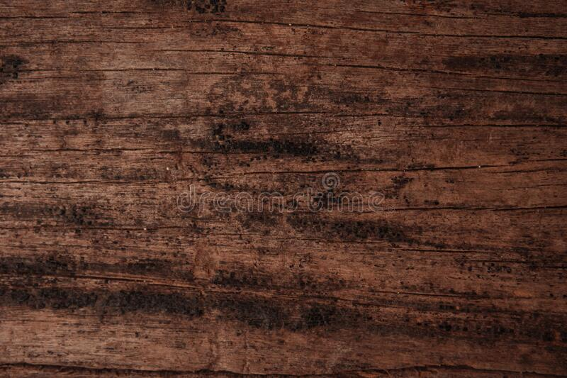 Rustic old wooden plank for background and design concepts. Rustic old wooden plank or board. This texture is often found on the walls of traditional wooden royalty free stock images