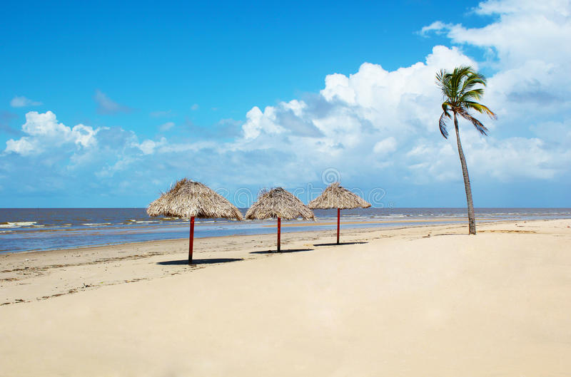 Rustic paradise beach in Brazil stock photography