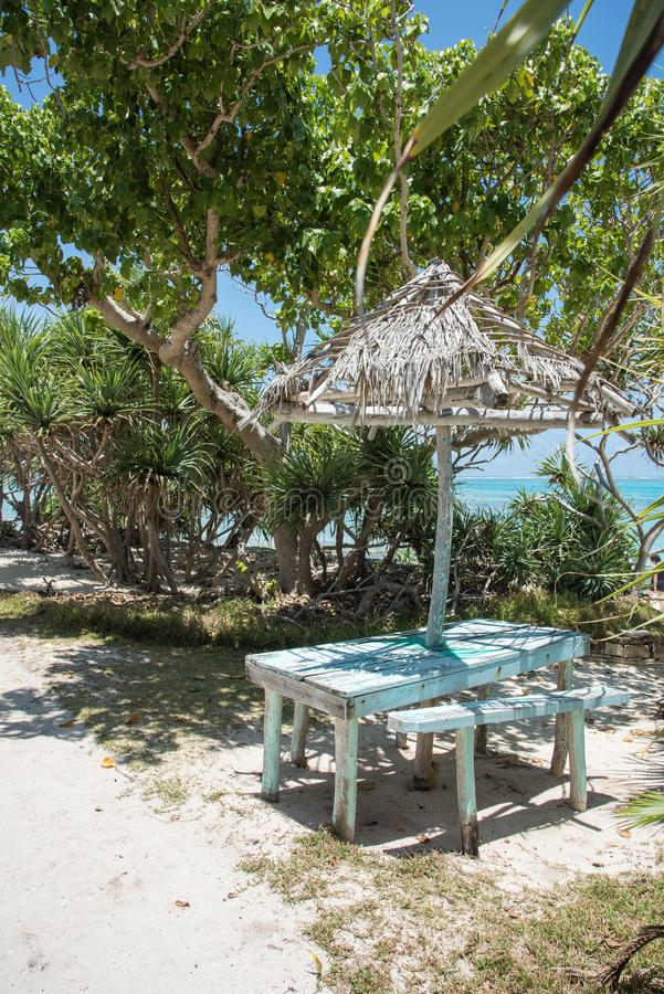 Rustic Picnic Table by the Sea. Mangrove trees and rustic thatched roof picnic table along path with Pacific Ocean beach view on a clear, sunny day at Mystery stock images
