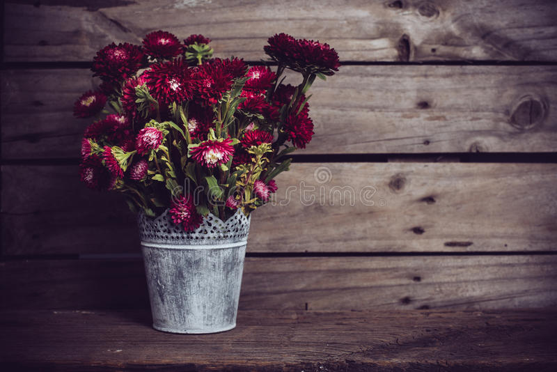 Rustic red flowers royalty free stock photos