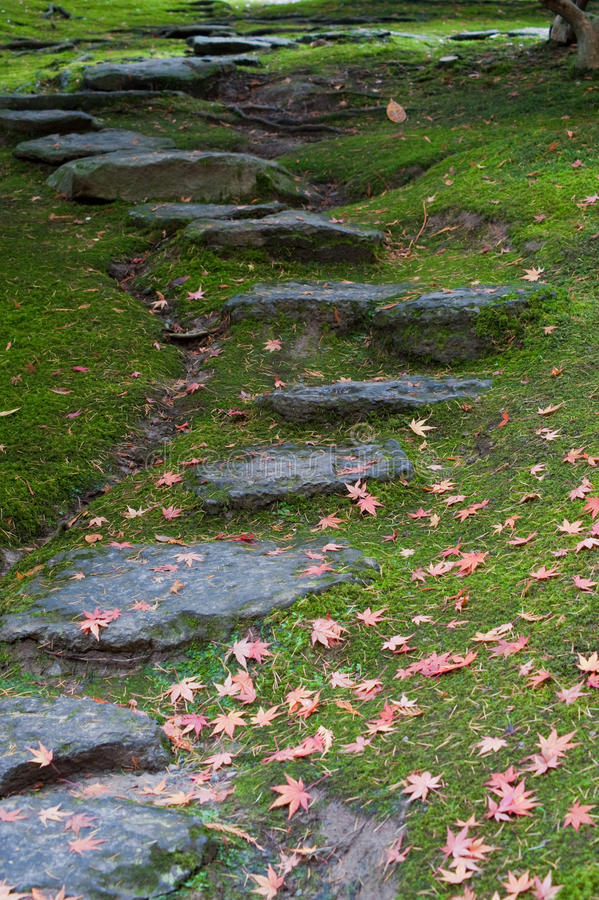 Rustic rock steps royalty free stock photos