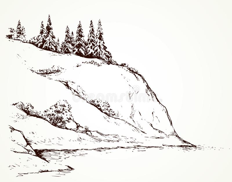 Firs on hill above river. Vector drawing vector illustration