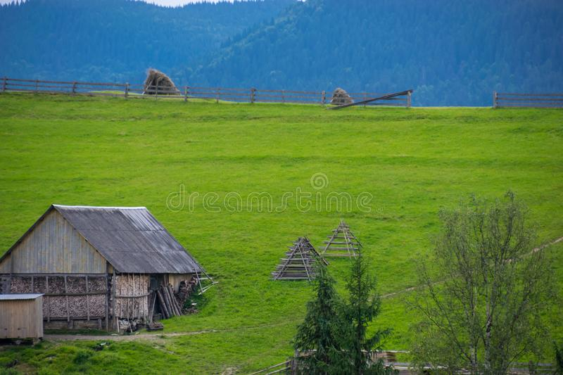 Rustic shed on a green meadow stock photo