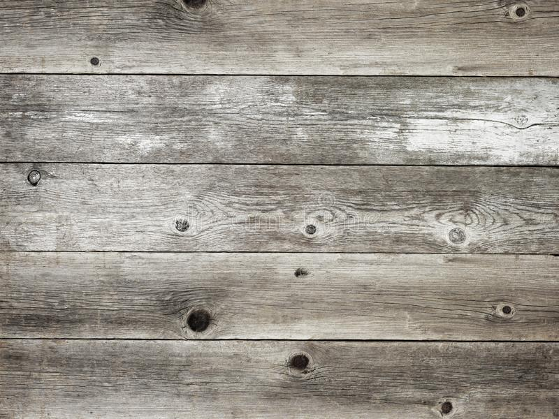 Rustic silver grey weathered barn wood board background. Rustic silver gray with grey weathered barn wood board background showing rich grain and knots royalty free stock photos