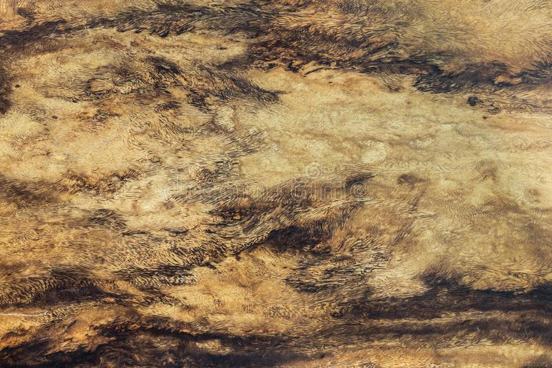 Rustic surface wood table texture template and rustic wood table texture top for your design royalty free stock image