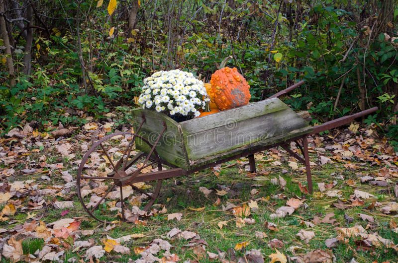 Rustic wheel barrow and fall display royalty free stock photography