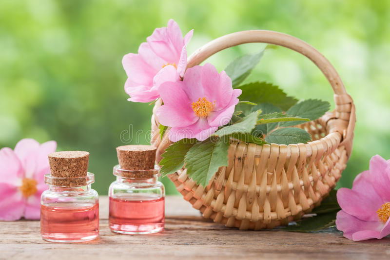 Rustic wicker basket with rose hip flowers and bottles of oil royalty free stock photography