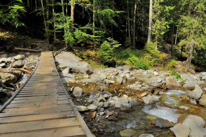 Download Rustic Wooden Bridge Over A Mountain Stream Stock Photo - Image: 37879448