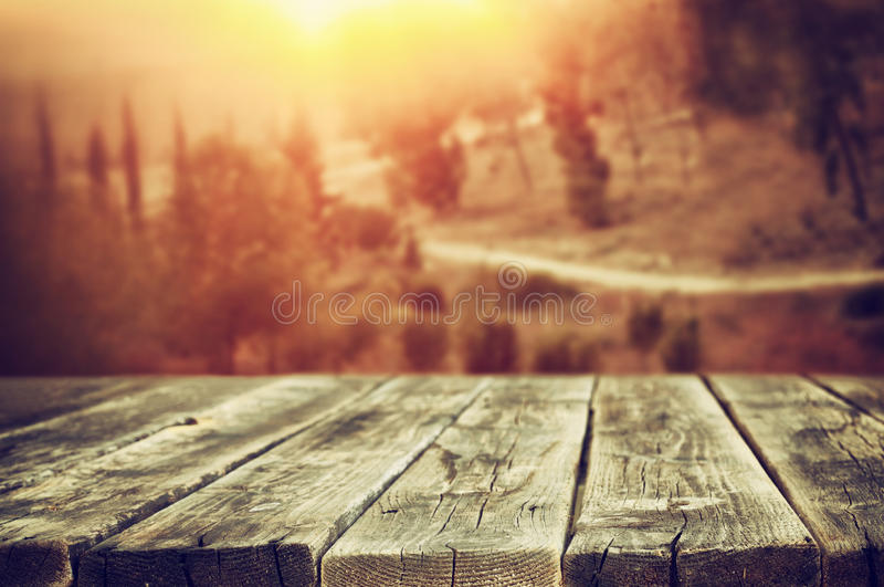 Rustic wooden planks in front of forest landscape in sunset.  stock image