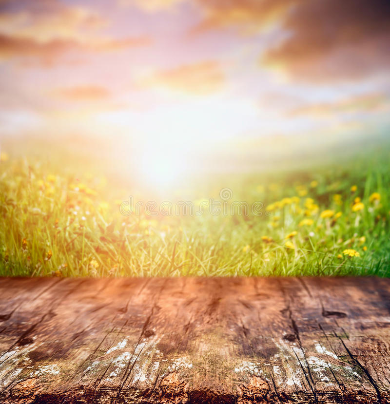 Rustic wooden table over yellow dandelion field and sunset sky, nature stock image