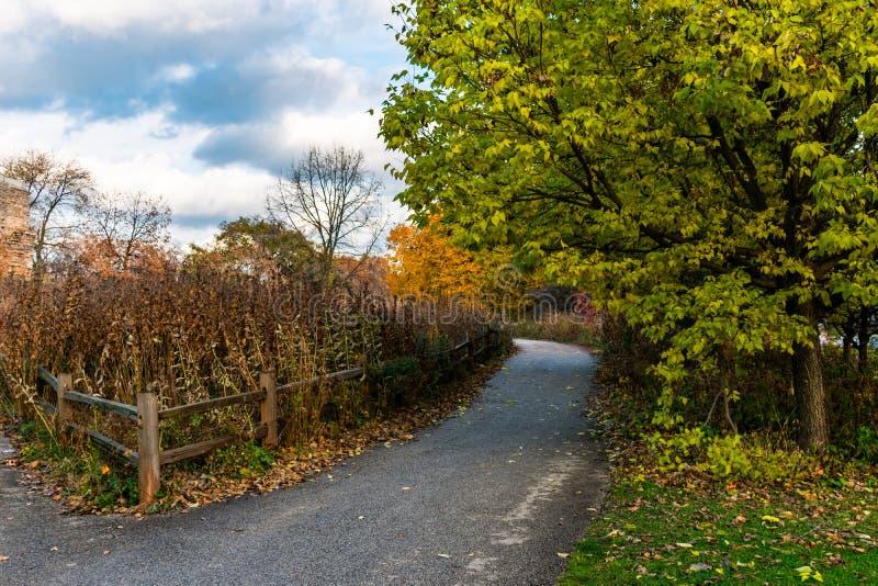 Rustiek Autumn Trail met Omheining in Lincoln Park Chicago royalty-vrije stock afbeelding