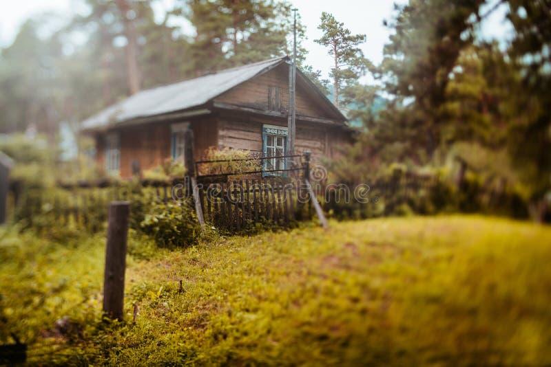Rustiek landschap met houten cabine en steeg stock afbeelding