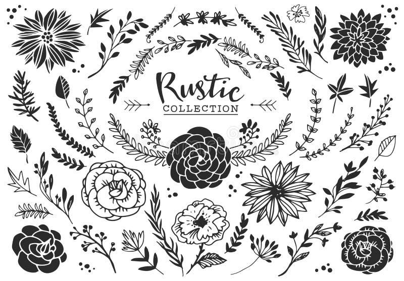 Rustieke decoratieve installaties en bloemeninzameling Getrokken hand vector illustratie